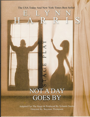 E. Lynn Harris - Not A Day Goes By - Program